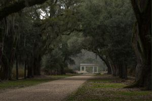 Rosedown Plantation Louisiana.jpg